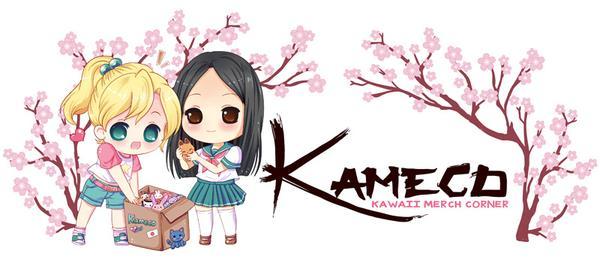 kameco-logo